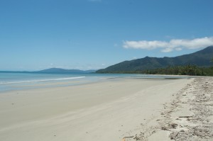 Pristine, deserted beach at Cape Tribulation