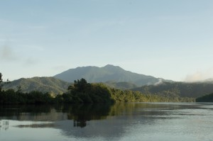 Thornton Peak looming over the  Daintree river - the summit gets 10 metres of rain annually